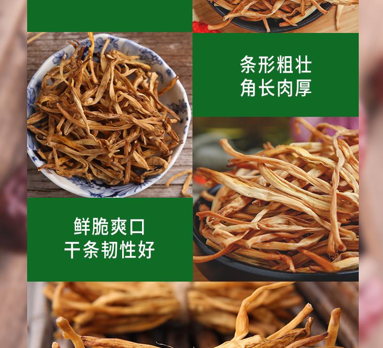 黄花菜_08.jpg
