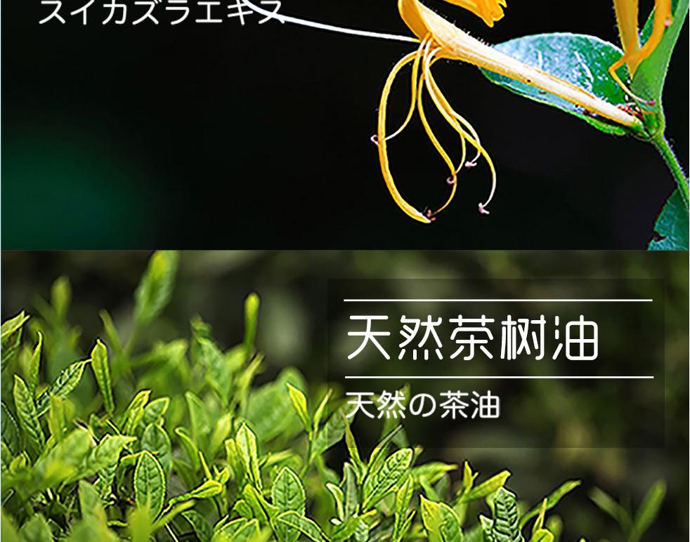 shijin_04.jpg
